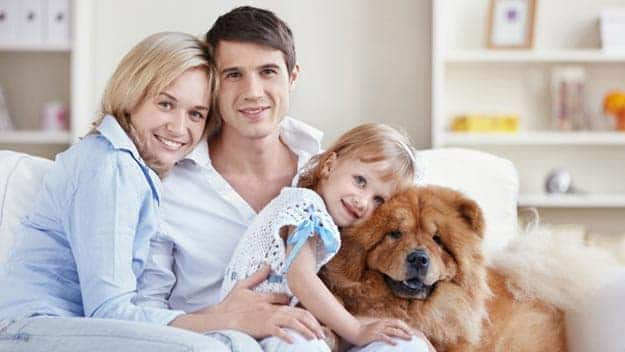 Wills & Trusts dog-young-family Direct Wills Dover